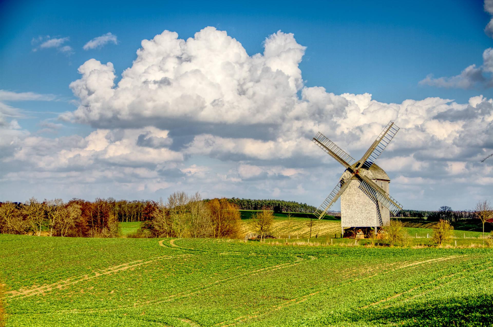 Bockwindmühle Storkow